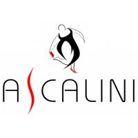 Ascalini - женская обувь на полную ногу